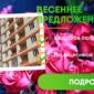 Весеннее предложение - квартиры к 8 марта